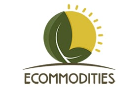 N_logo_ecommodities